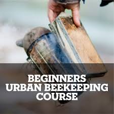 Beekeeping Course London