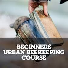 Beginners Beekeeping Courses